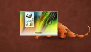 gimp28-large_002